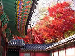 Hình ảnh rực rỡ về Hàn Quốc - Phiên dịch tiếng Hàn - PhiendichvienPro
